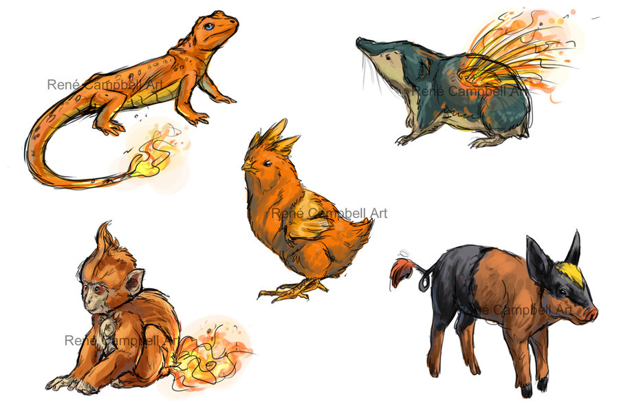 realistic_pokemon_sketches__fire_starters_by_nauvasca-d5i9d1w