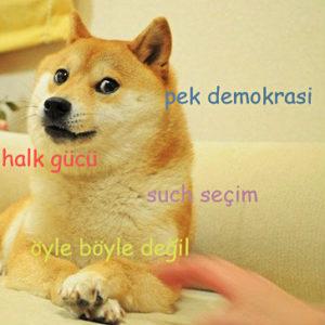 demokratikdoge00