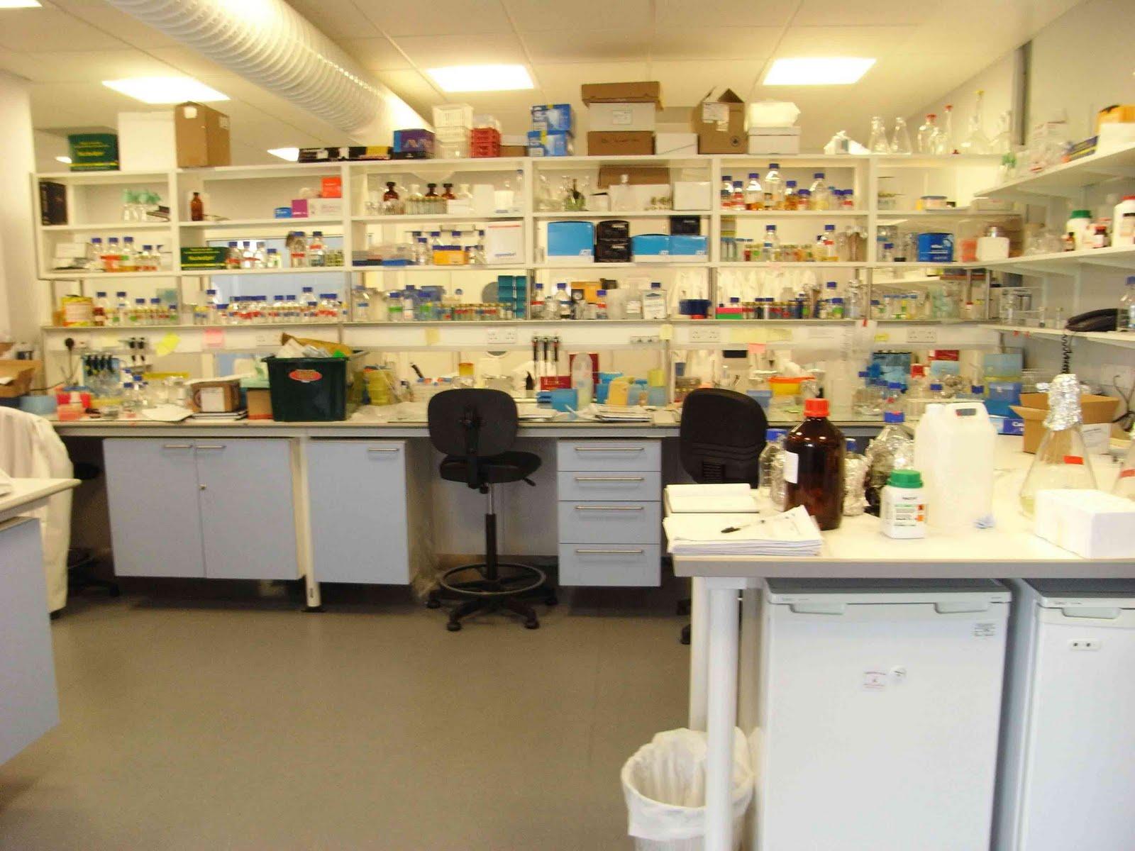 Temsili bir laboratuvar. İçerideki hayat çok ama çok rutin. Hayır, kimse T-Virus geliştirmiyor ama geliştirse bile bu rutinlikten kurtulamaz. Özetle tüm Gezi süreci şahsım tarafından böyle bir yerde takip edildi.