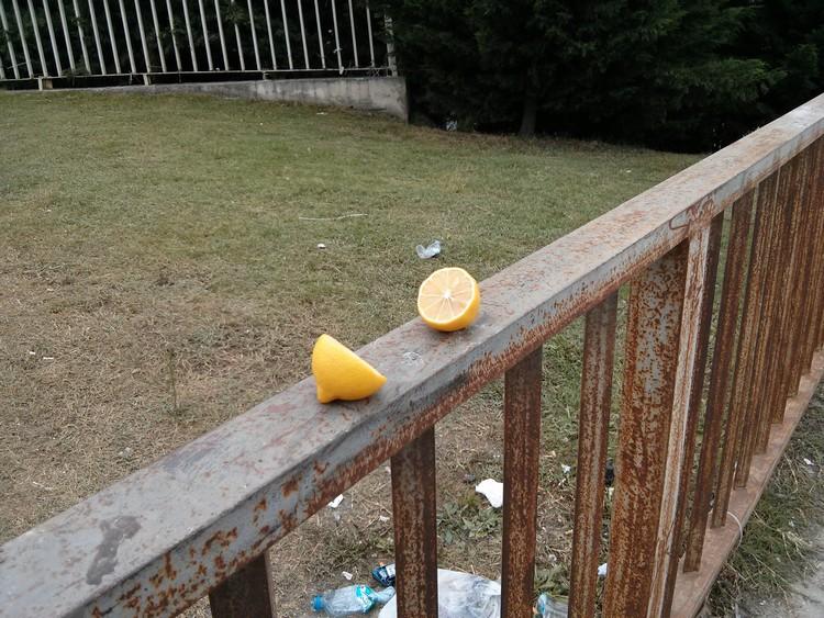 """Cihan """"Çatışma ertesi bir sabah görüp çekmiştim, limonu ikiye bölüp birkaç yere bırakmıştı birileri."""" demiş. Bu fotoğrafı kendi çekmiş. Bizce gezi ruhunu en iyi bu limon parçaları özetliyor."""