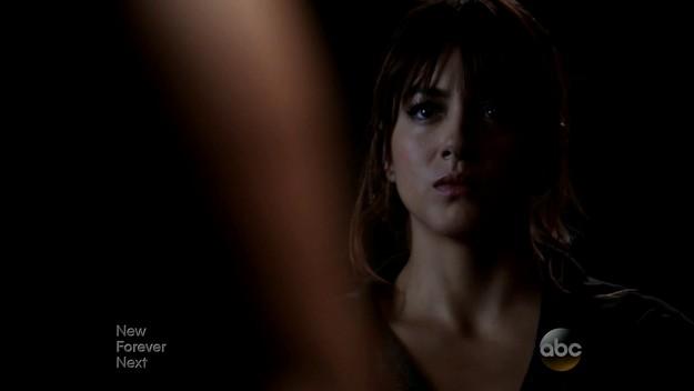Agents of SHIELD S02E03 Skye