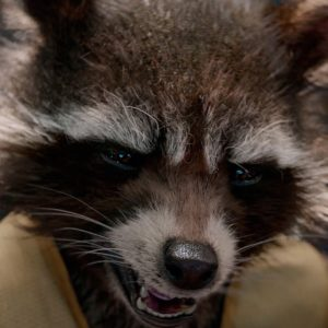 guardians-of-the-galaxy-rocket-raccoon