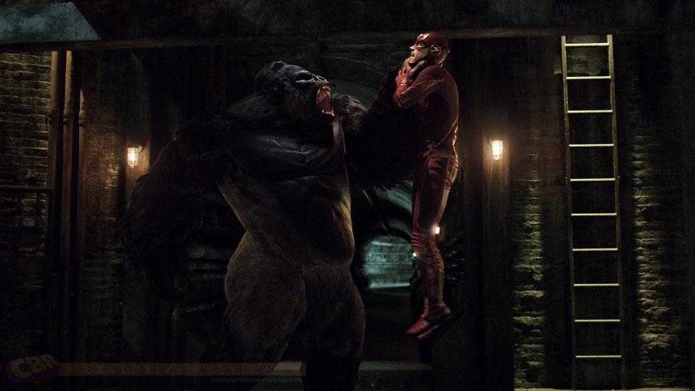 Flash-TV-Show-Gorilla-Grodd-Fight-Image