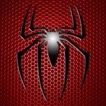 6998206-spiderman-logo-hd