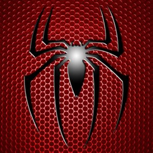 6998206-spiderman-logo-hd