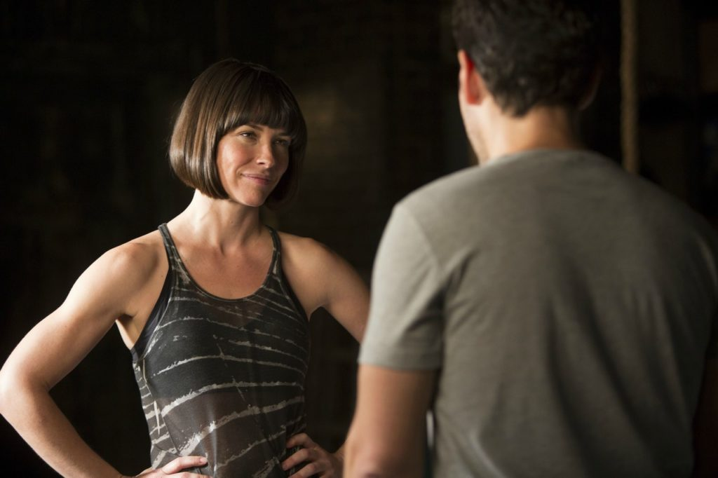 Ant-Man Hope Van Dyne