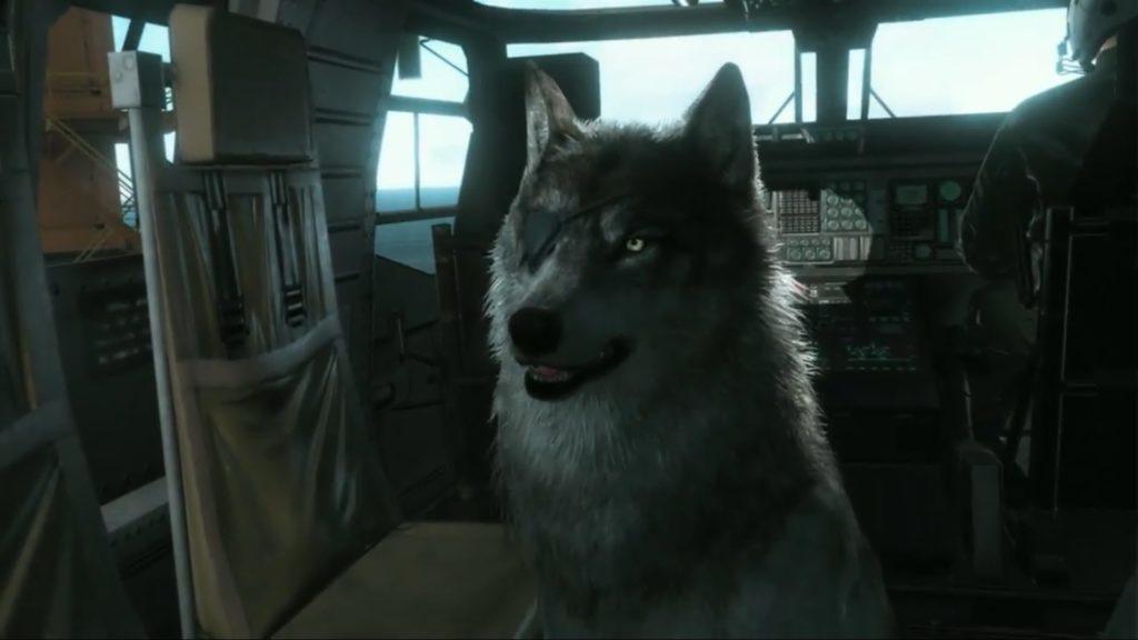 04 D-Dog
