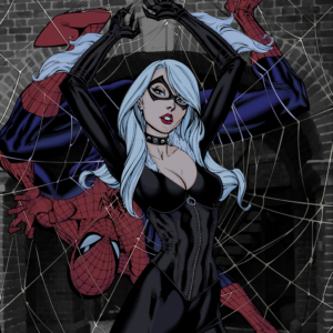Black Cat SpiderMan