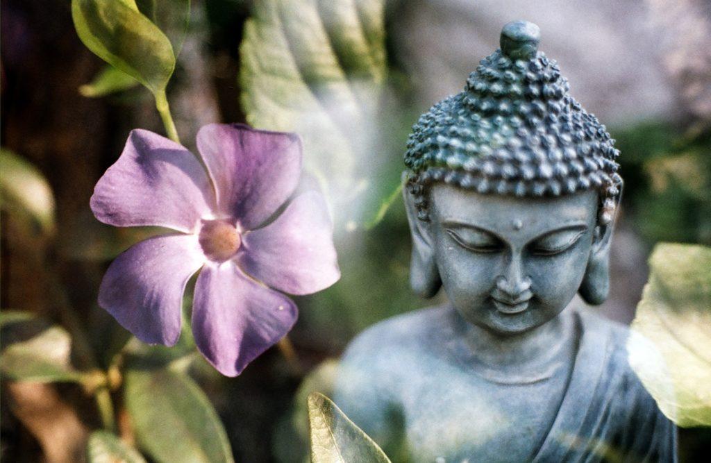 05 Budizm