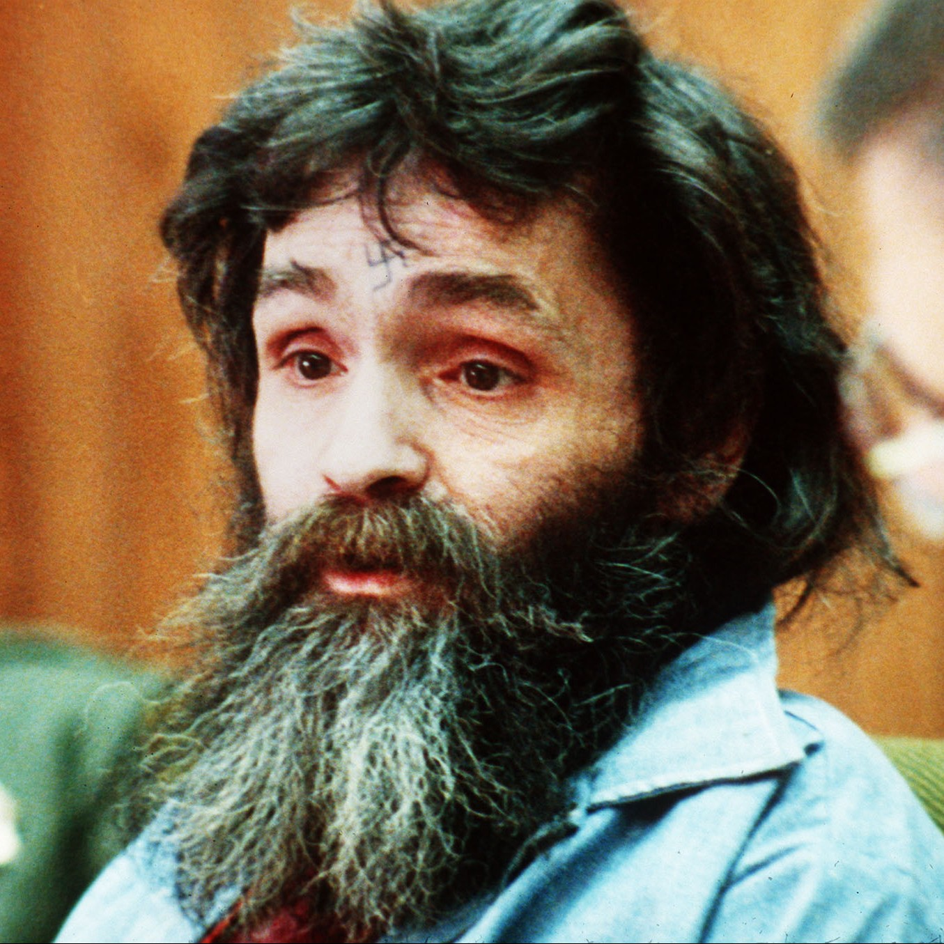 """an analysis of the infamous charles mason cult When you read the words """"cult"""" and """"murders"""" in the same line, you'll evoke evil images of charles manson motivating his murderous hippie cult to commit helter skelter—an apocalyptic race war between blacks and whites the picture of wild-eyed manson with a swastika carved in his."""