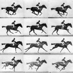 RACE-HORSE-MOVIE