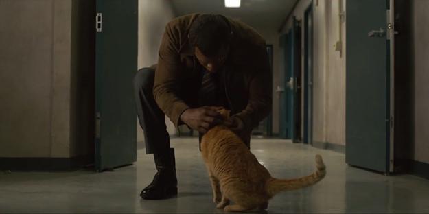 Captain-Marvel-Cat-Nick-Fury-e1543934412842