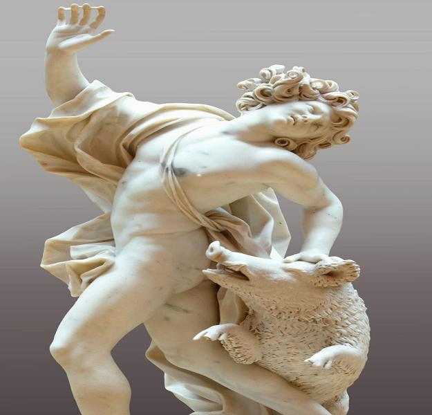adonis-heykel