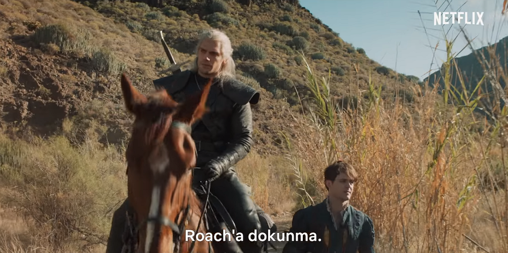 dont-touch-roach - The Witcher