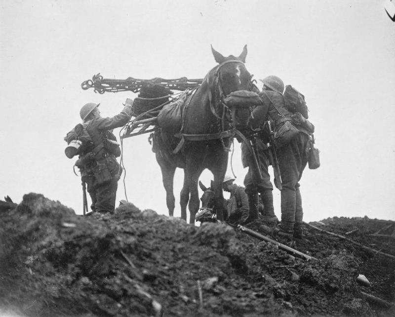 HoreseInGasMaskPilckemRidge31October1917