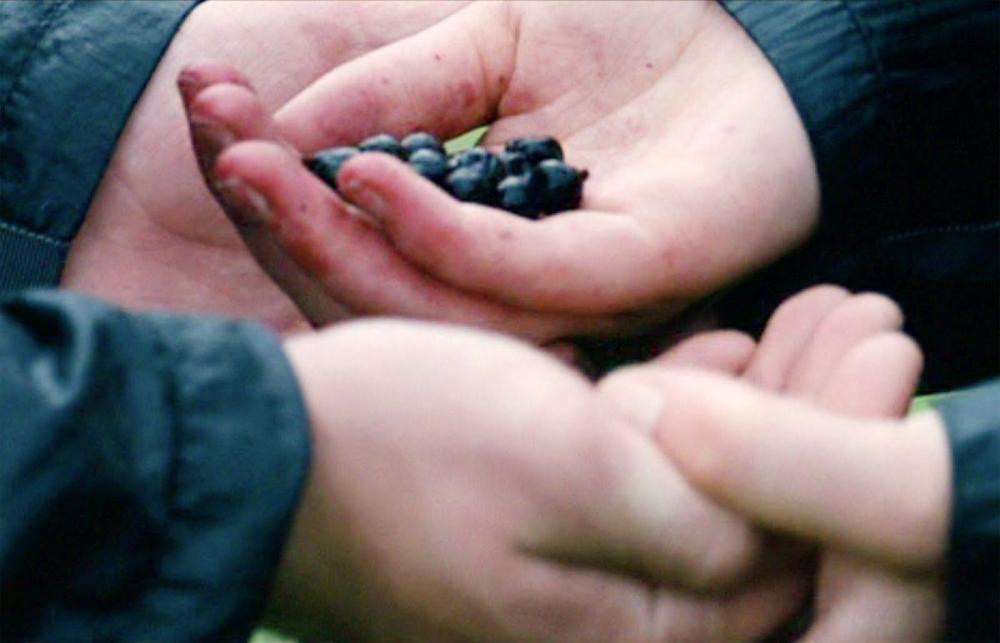 gece kilidi - belladonna